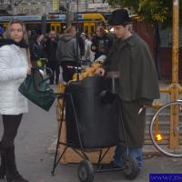 Budapesta si Slovacia putin