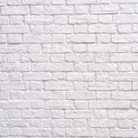jucat minge la perete