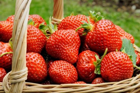 fructul-saptamanii-capsuna_size1